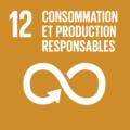 F_SDG-goals_icons-individual-rgb-12