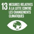 F_SDG-goals_icons-individual-rgb-13
